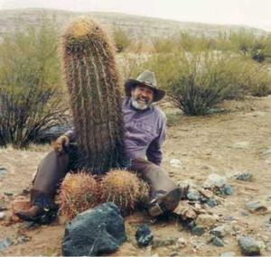 pénisz kaktusz a tesztoszteron normális, nincs erekció