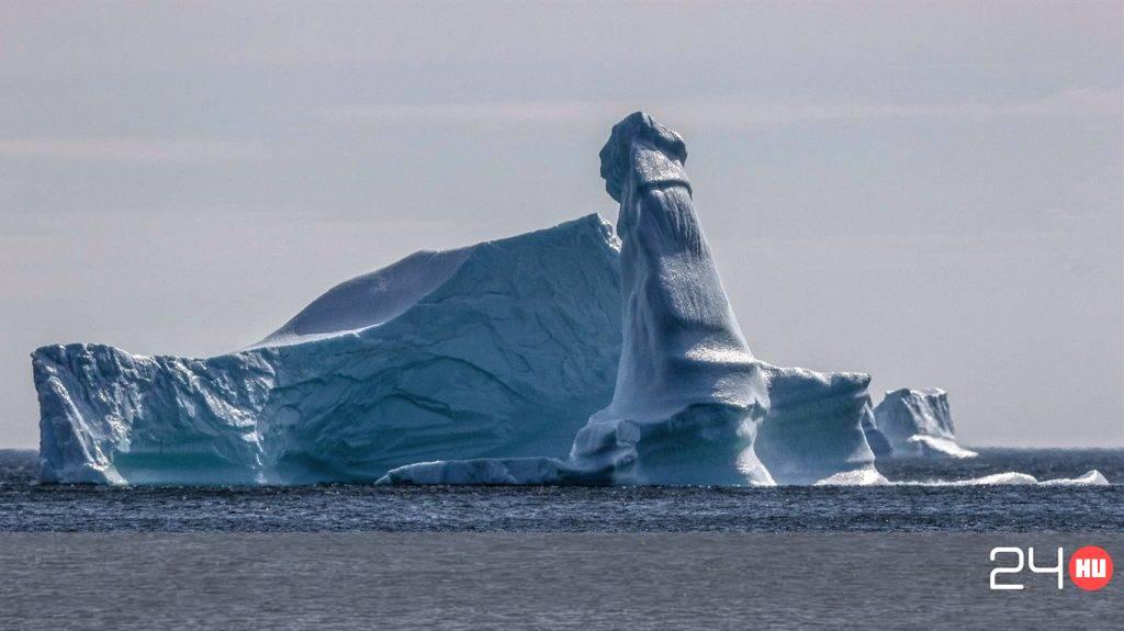 pénisz jég)