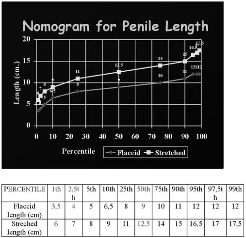 hány centimétere van az átlagos pénisznek