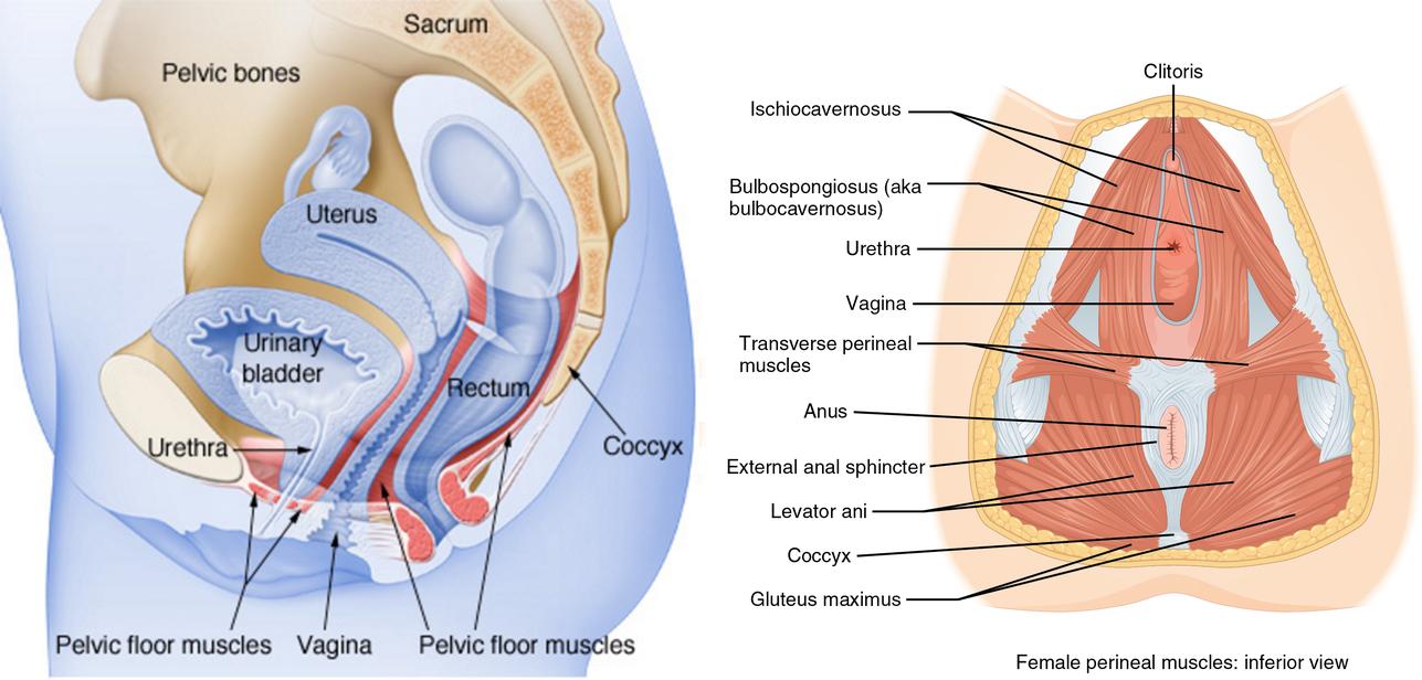 Így mozoghatnak a férfiak a jobb szex érdekében