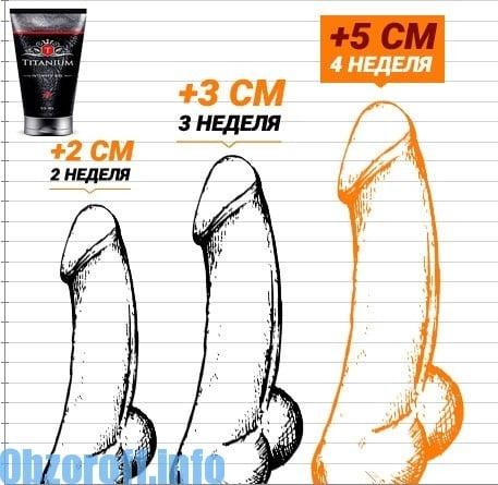 pénisz térfogata az erekció során