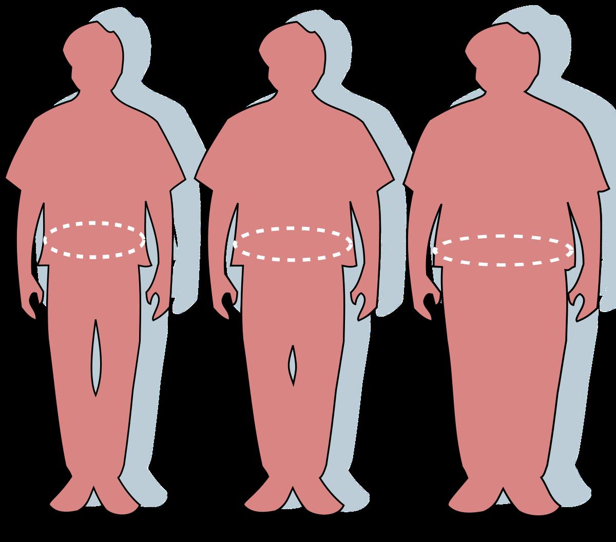 a pénisz növekedése és a túlsúly