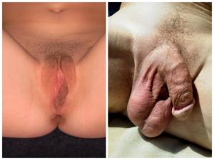 pénisz férfi testfestésben