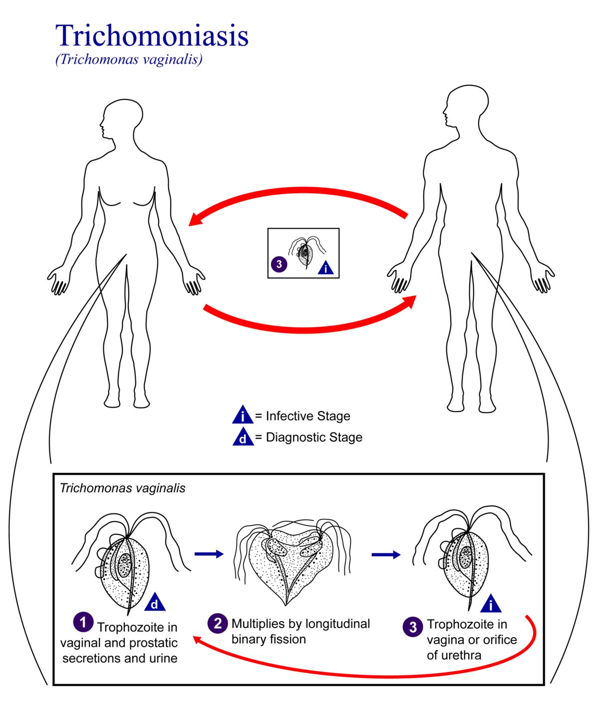 9 ok, amiért fájdalmas lehet a szex