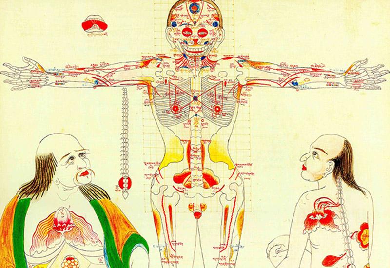 A tibeti orvoslás és az erekció)