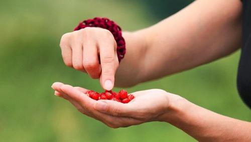 hogyan lehet növelni a női libidót gyógynövényekkel