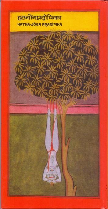 A hímvessző 7 mérete és a megfelelő pózok   tartozekstore.hu