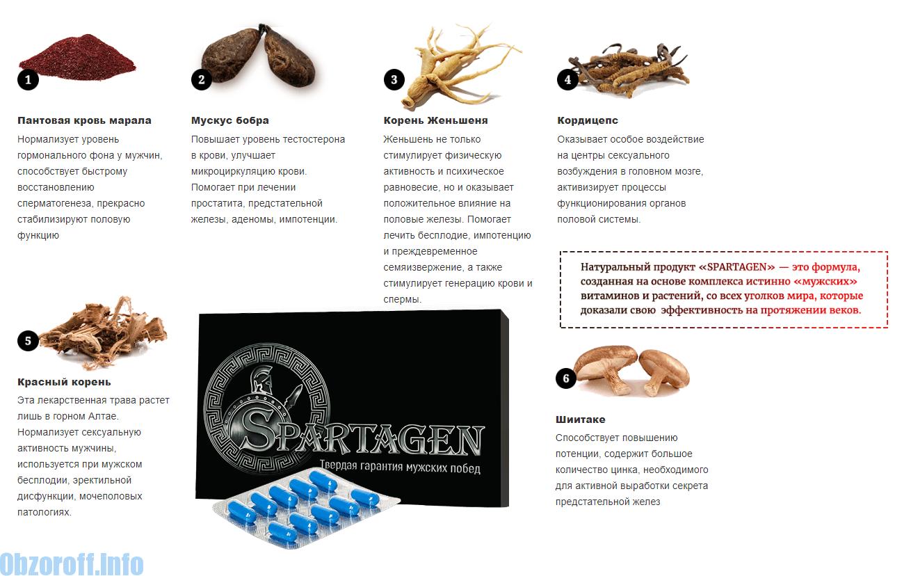 milyen termékek szükségesek az erekció fokozásához)