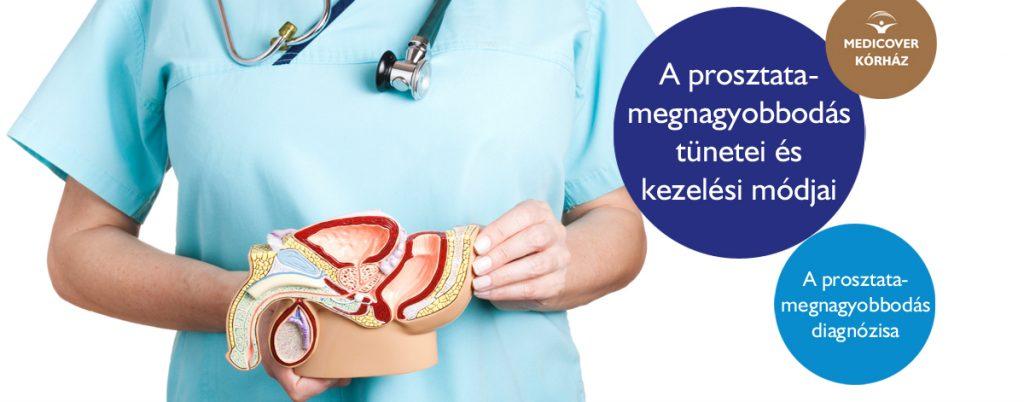 orvosi pénisz megnagyobbodás)