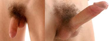 pénisz térfogata az erekció során)