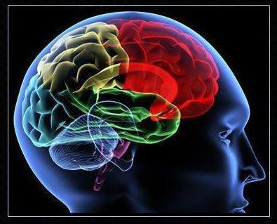 A nyaki idegrendszeri tünetek elakadása - Feszültség September