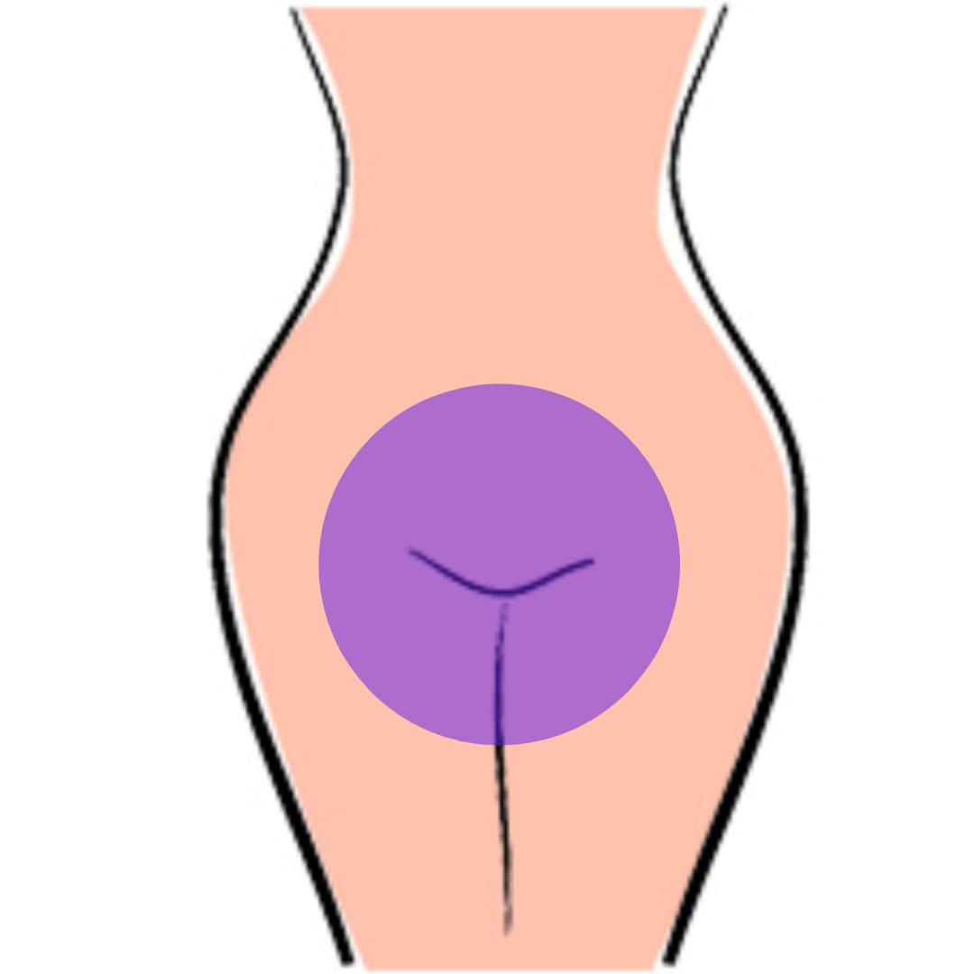 a pénisz intim területei