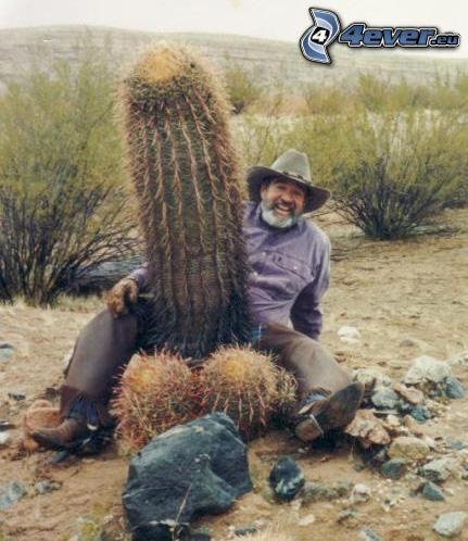 pénisz kaktusz)