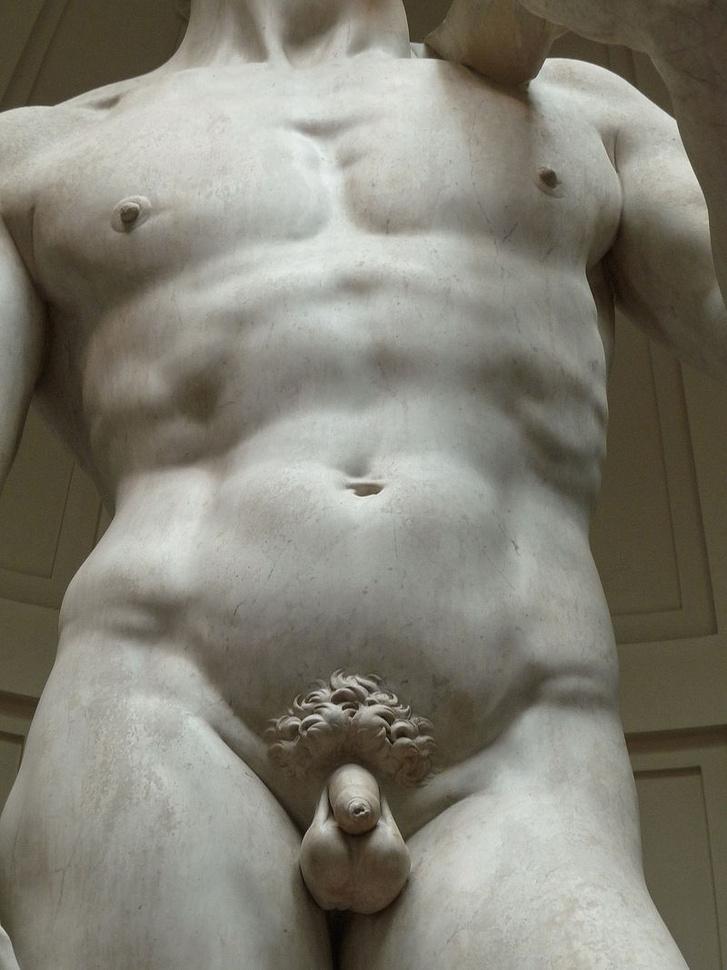 mekkora a pénisz maximális mérete