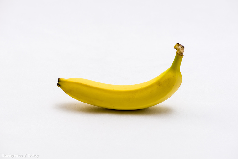 mely gyümölcsből nő a pénisz