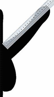 Helyes mérésére a hossza és mennyisége a pénisz