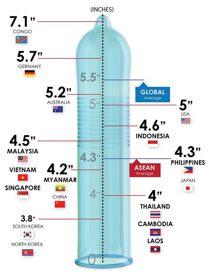 a leghosszabb pénisz hossza)
