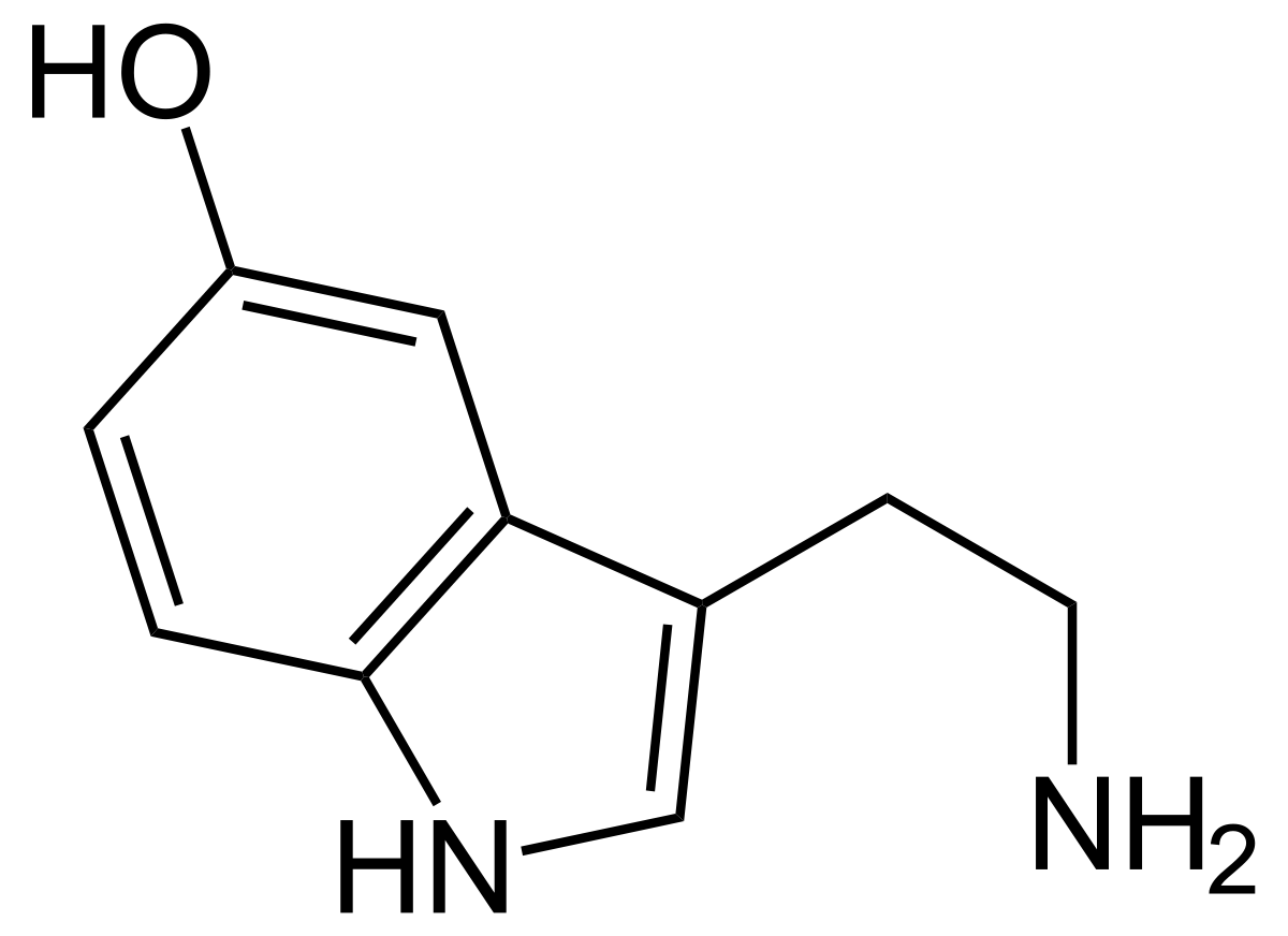 valerian erekció