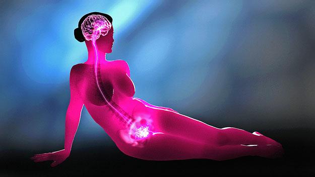 hogyan lehet növelni a női libidó értékeléseket