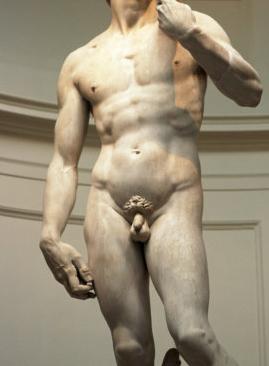 mi az átlagos férfi pénisz prosztata eltávolító erekció