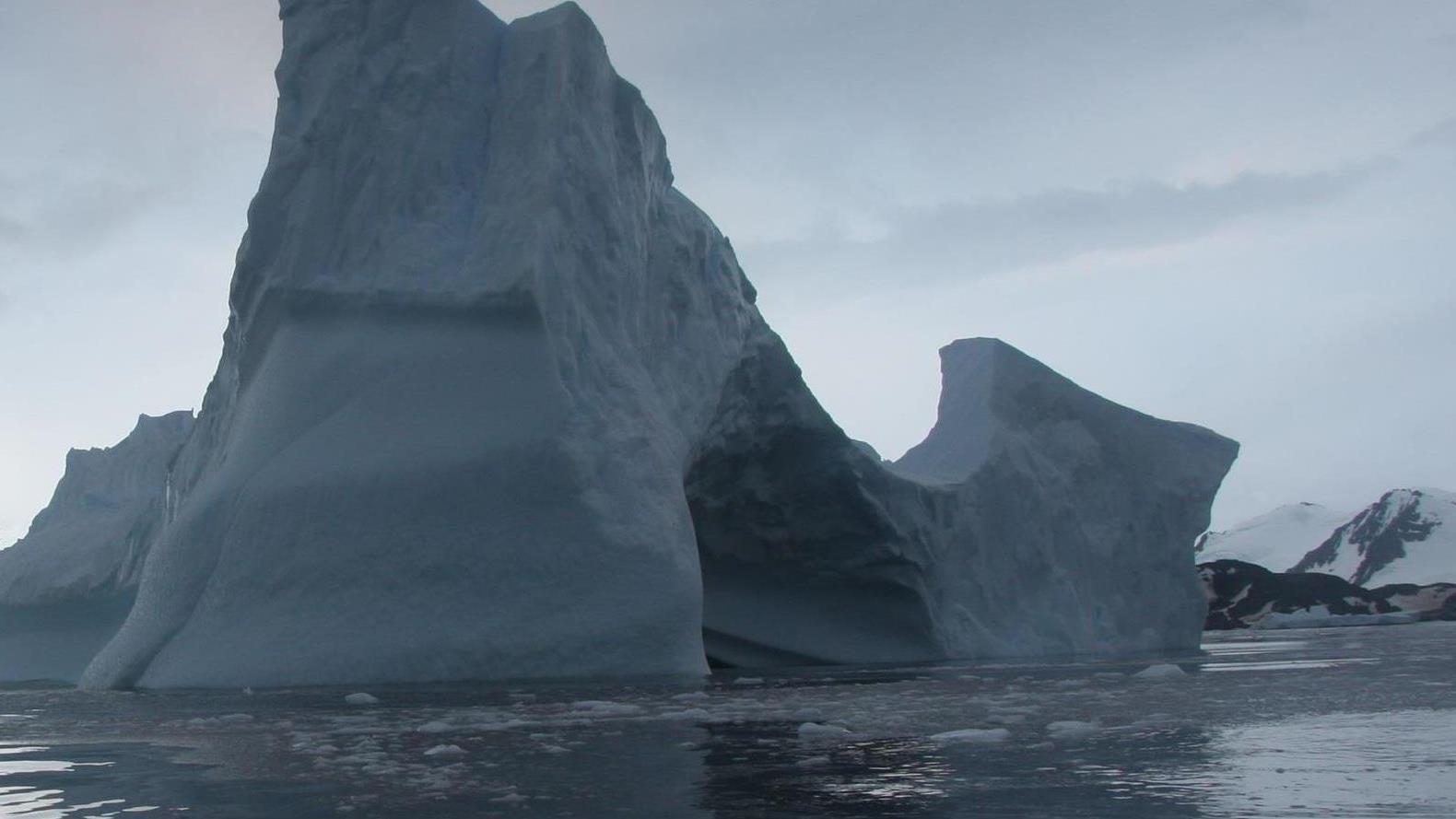 Pénisz jégkocka készítő