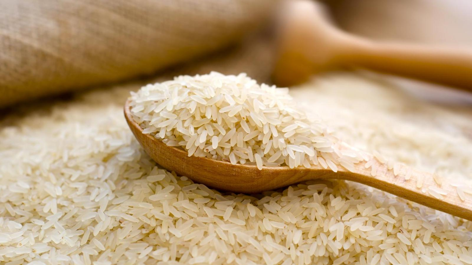 rizs és erekció)